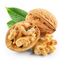 dried fruits dubai wholesale walnuts walnut