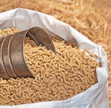 Animal cattle feed, organic corn feed prices