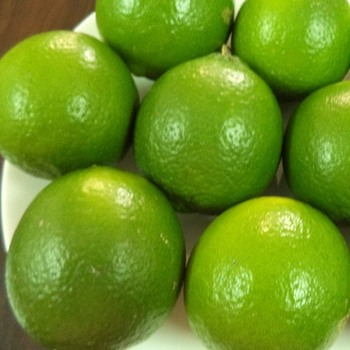 Eureka Lemon, Lime, Citrus Fruit