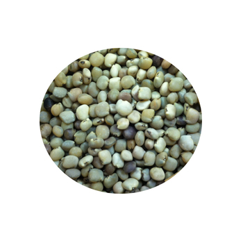 Guar Gum Powder Exporter From India