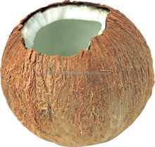 Bulk Packing Organic Coconut Oil