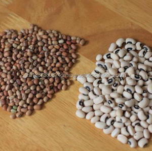 AAA Grade Top Quality Red, Brown, Black & Black Eye Cowpeas