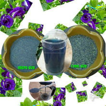 Butterfly Pea Flower in Powder From Thailand