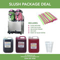 Twin Slush machine Package CE Approved Freezing Time 40 min
