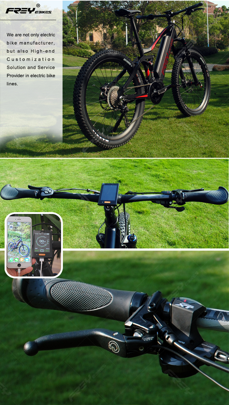FREY ELECTRIC BIKE AM1000 details