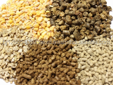 VARIOUS HIGHT QUALITY ANIMAL FEED