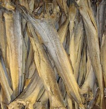 100% dry salted stock fish for sale without head