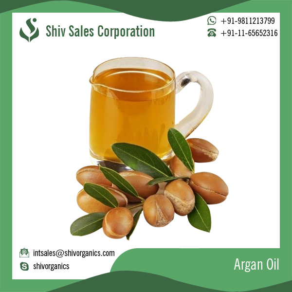 Imported Moroccan Argan Oil For Hair Bulk Argan Oil Cosmetic Moroccan Oil Bulk Arganic