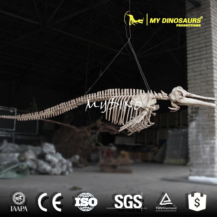 dolphin 3d skeleton.jpg