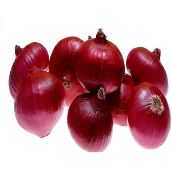 Ready Stock For Export Of Onion