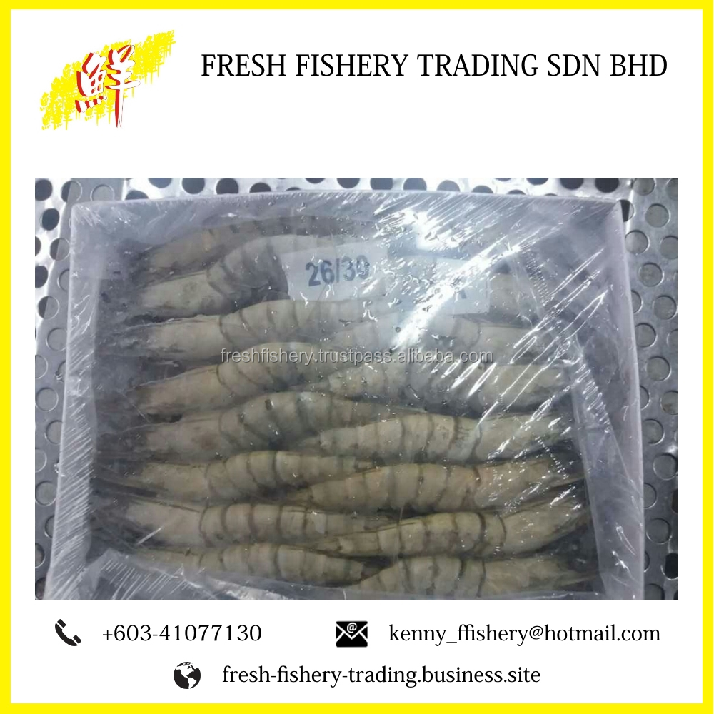 Black Tiger Prawn Shrimp Price