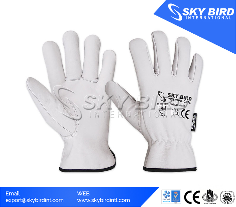 Driver Leather Gloves Thermal 100g Thinsulate