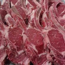 Halal Fresh & Frozen Beef Meat