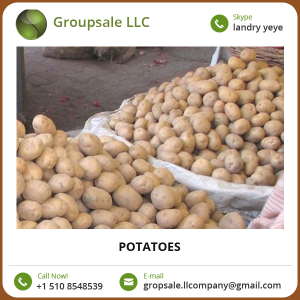 Export Quality Fresh Potato from Pakistan at Affordable Bulk Price