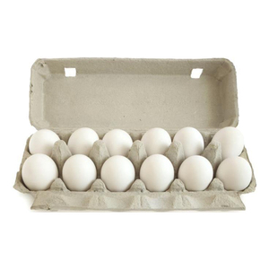 "Fresh Chicken Table Eggs White ""Size - M"" Shell Chicken Eggs"