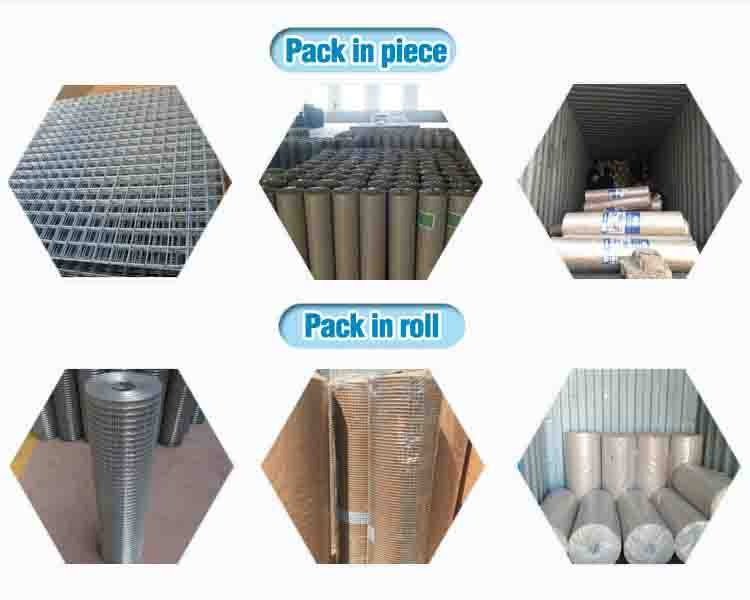 corrosion resistance firm welded wire mesh sheet hot sale with lower price