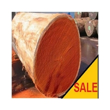 Padouk/Padauk Log And Sawn Timber from Vietnam