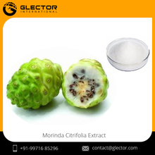 Natural Morinda Citrifolia Noni Fruit Extract