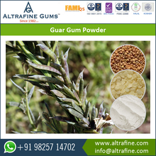 Most Selling Natural Guar Korma /Guar Gum/ Guar Gum Powder at Wholesale Price