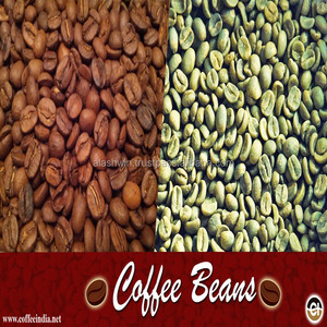 robusta green coffee bean for sale