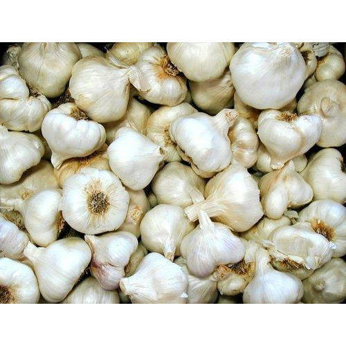 Pure Purle White Fresh Natural Garlic for sale