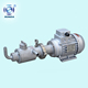 CG light type stainless steel screw pump small filling slurry pump