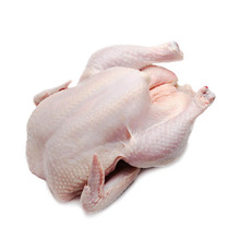 Frozen Halal Whole Chicken For Sale In SA