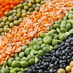 Red Split Football Lentils Organic Certified, Bulk!