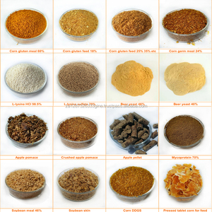 All Types of Animal Feed / WHEAT BRAN