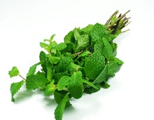PEPPER MINT LEAVES - HOT HERB FOR YOUR HEALTH AND BEAUTY