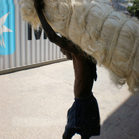 Kenya Quality Sisal Fiber, UG, SSUG, Flax Fiber Competitive Prices For Gypsum and Plumber End Users