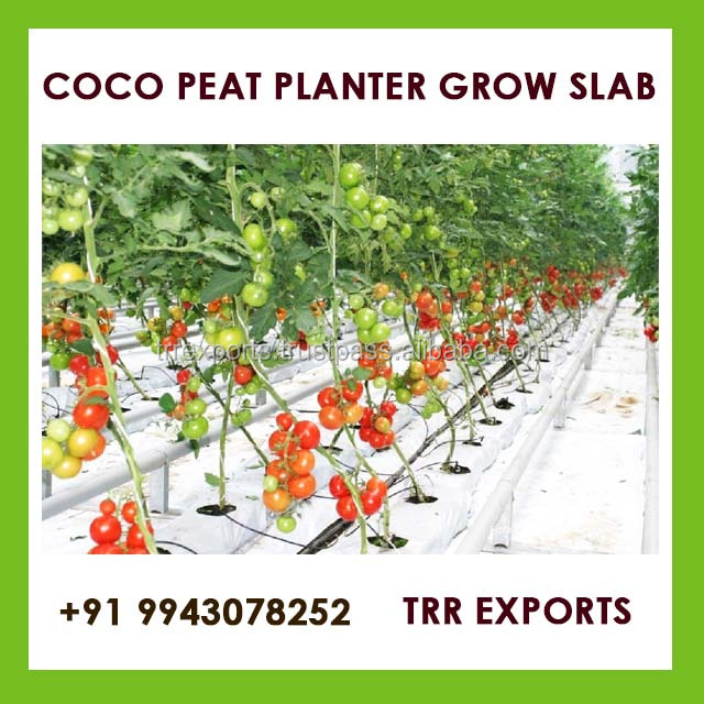 geotextile planting grow bags