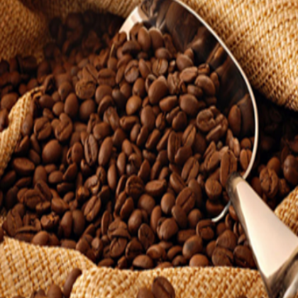 Low price high grade Arabica and Robusta green coffee for sale