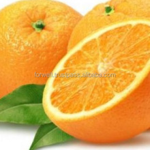 fresh mandarin orange fruit/Nanfeng baby mandarin orange