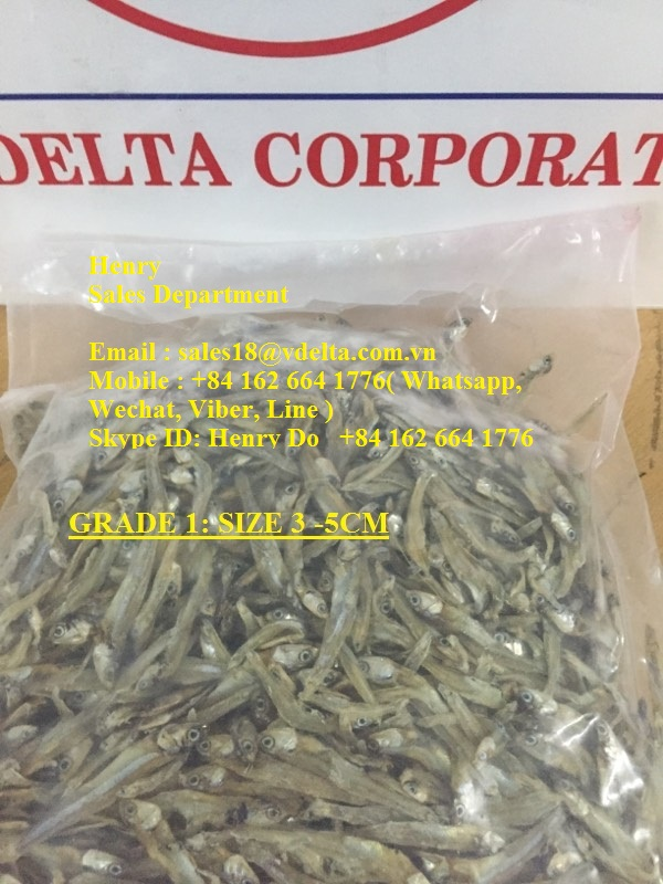 WHATSAPP +84 963949178/ HIGH QUALITY BEST PRICE - SUN DRIED ANCHOVY & DRIED SALTED ANCHOVY (HEADLESS) FOR NOW!