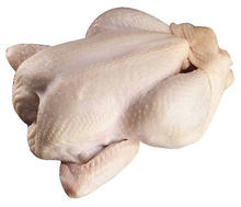 Grade A Halal Frozen Whole Chicken / Frozen Chicken Feet / Frozen Chicken Paws