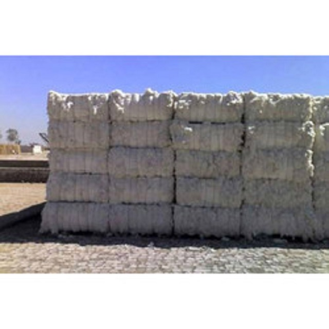 Top Quality bulk raw cotton for sale