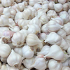 /product-detail/white-garlic-62006100892.html