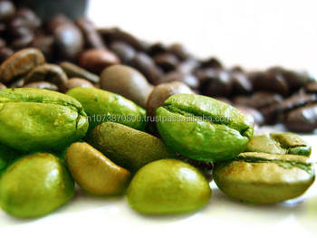 Arabica plantation Unroasted Coffee Beans less price GREEN