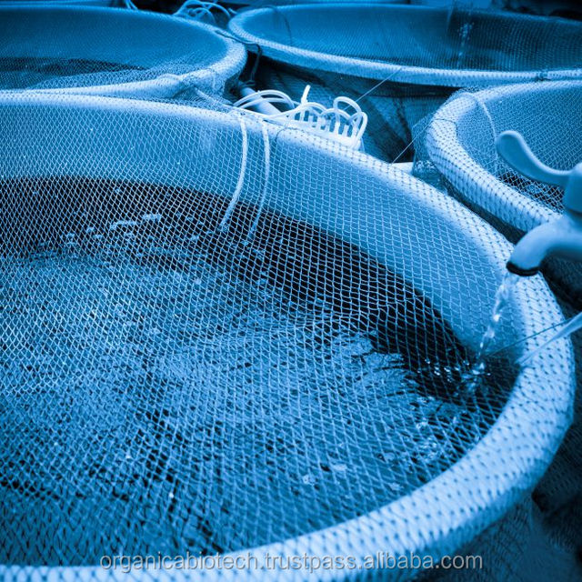 Organic water probiotics maintains ideal for hatchery eggs environment
