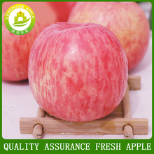 China Jingning Fresh Apple Red Fuji Apples