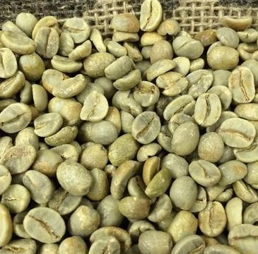 Considerable Price Arabic Green Coffee