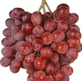 bst fresh globe seedless grapes for sale at cheap price