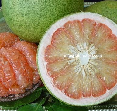 SWEET POMELO THAILAND CHEAPEST PRICE