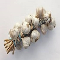 Natural fresh garlic price per ton for sale Dreid Gralic for sale Peeled Garlic for sale
