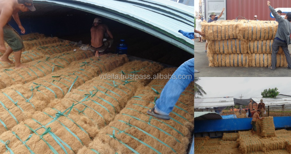 High Quality Golden Brown Coconut Fibre
