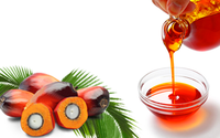 Malaysian Red Palm Oil /Indonesia Quality Crude Palm Oil