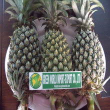 GOOD QUALITY FRESH PINEAPPLE, BEST PRICE FOR NOW !