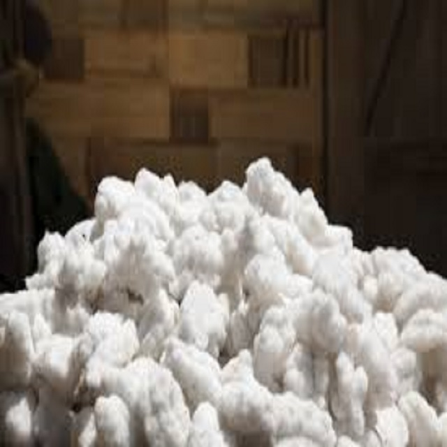 raw cotton for sale very good price.