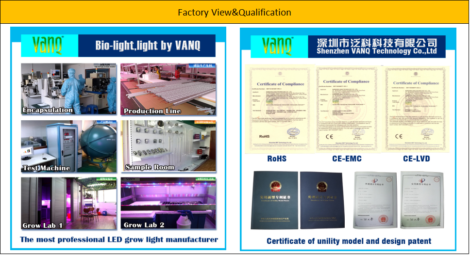 VANQLED distributor price,LED Grow Chip Full Spectrum Chip,Remote Phosphor Grow LED 1-500w,Bridgelux chip,High quality,400-840nm